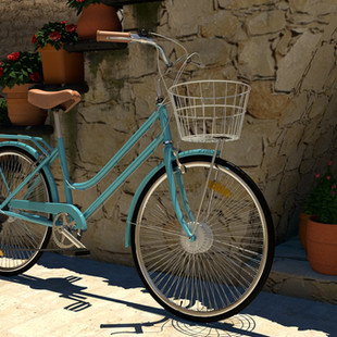 Italian Environment Bike