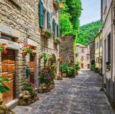 Italian Street with Plants