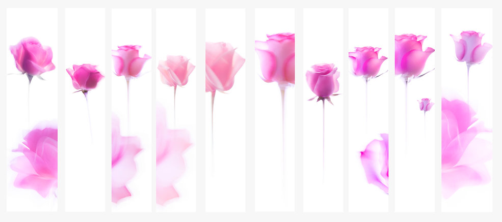 lancome roses collection retail.jpg