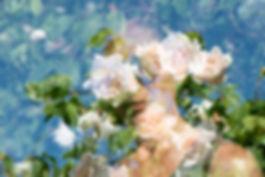 FLOWER PORTRAITS_DSC5183.jpg