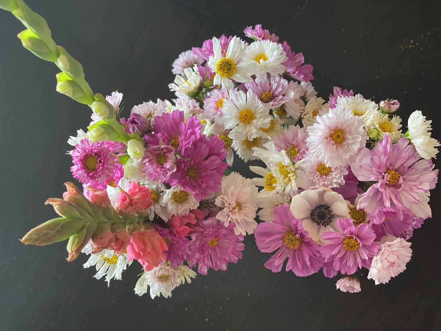 cosmos bouquet2.jpg