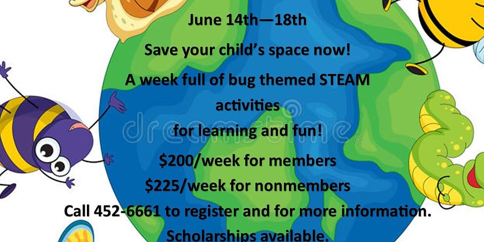 STEAM Camp - A Bugs Life!