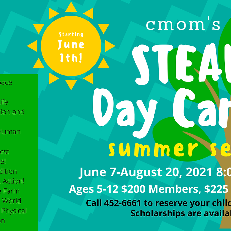 STEAM CAMPS