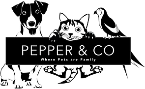 Pepper&Co-Logo-White-on-Black-Transparen