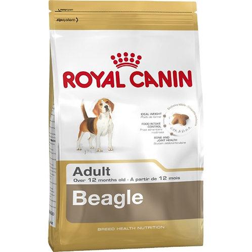 Royal Canin Canine Beagle Adult