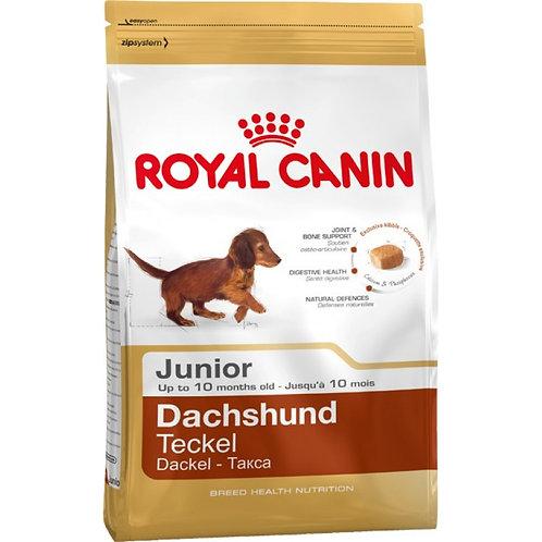 Royal Canin Canine Dachshund Puppy