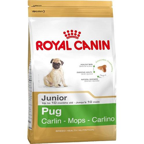 Royal Canin Canine Pug Puppy