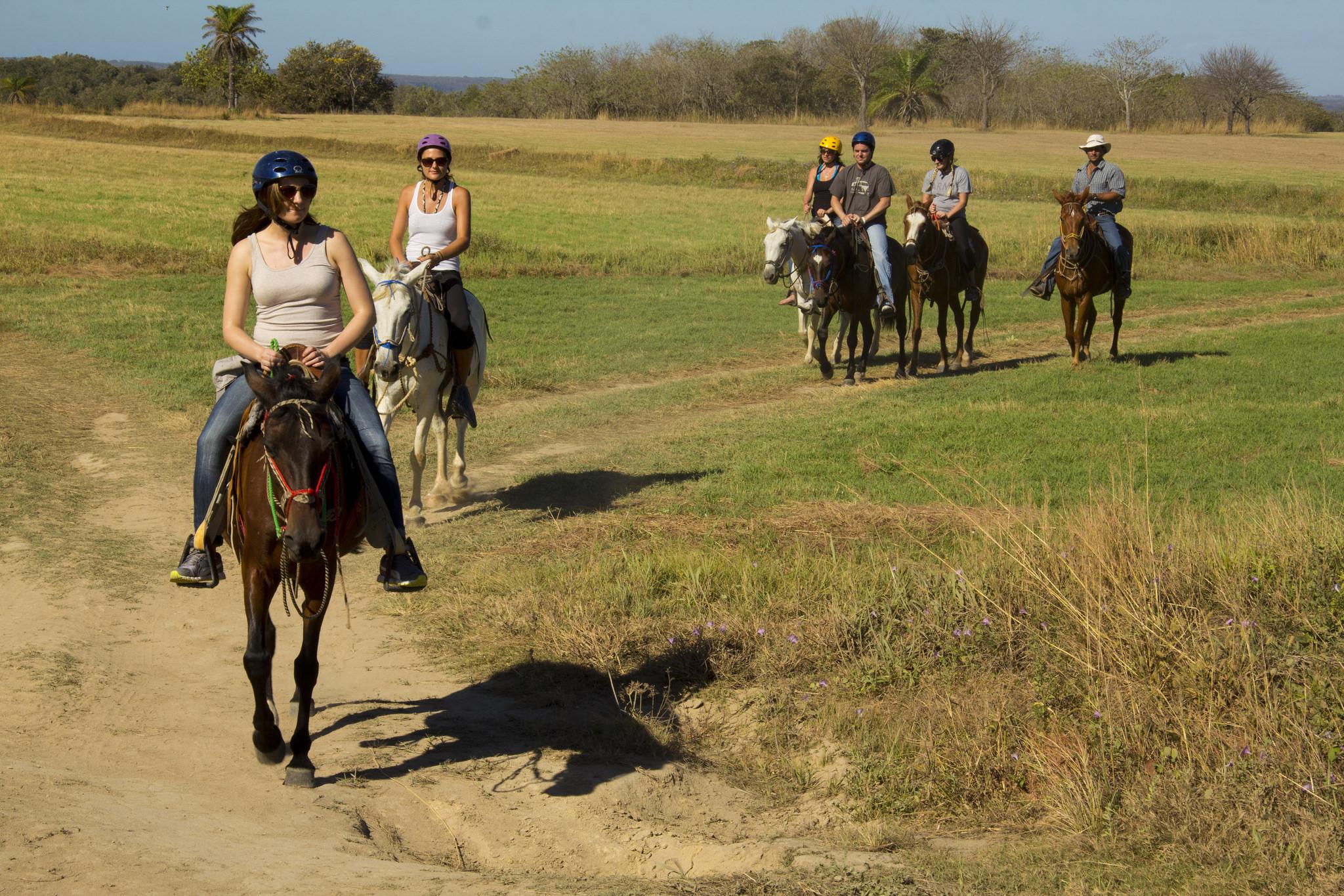 Horseback field Guanacaste