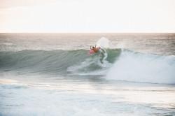 surfer website