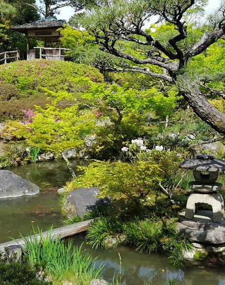 Hill_Pond.jpg