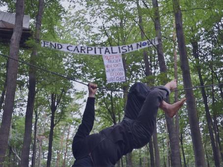Wald statt Asphalt – ein Bericht aus dem Widerstand