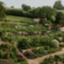 batcombe_kitchen-garden-from-above_66926