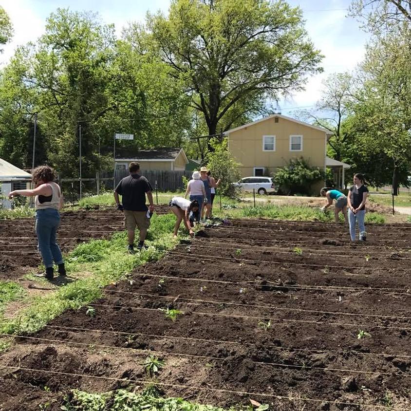 Dig In! International Community Meal + Gardening!