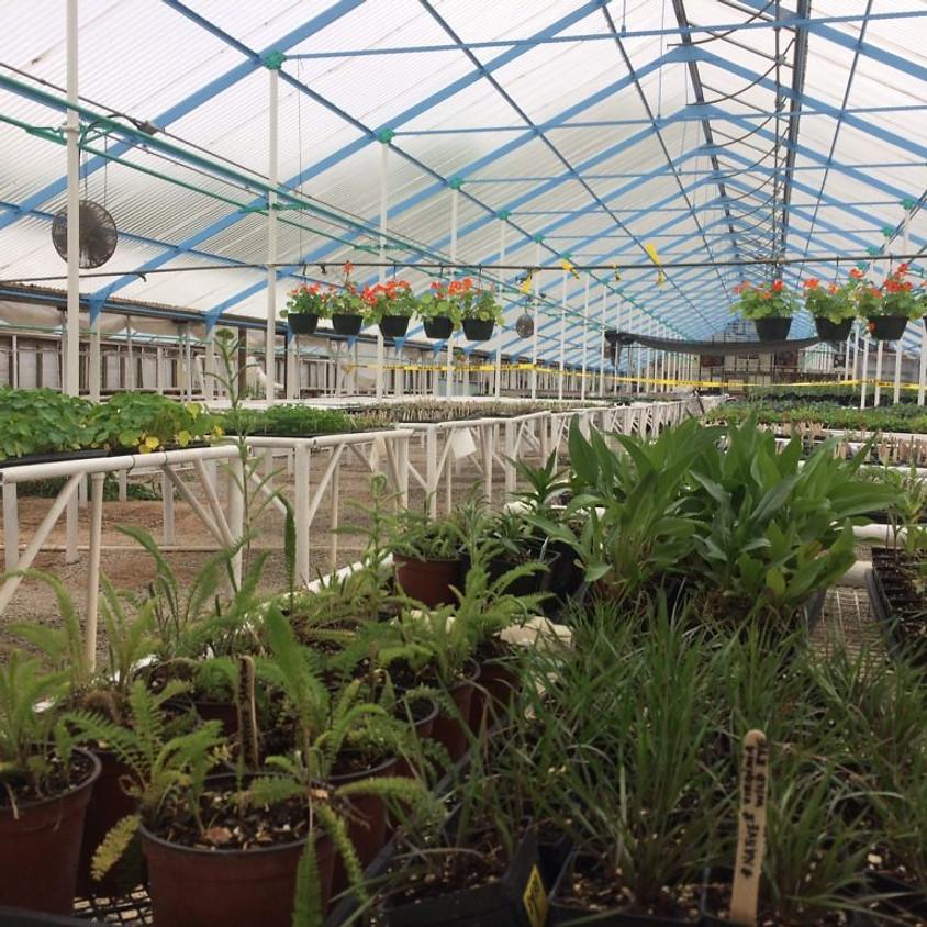Sunrise Annual Plant Sale Fundraiser