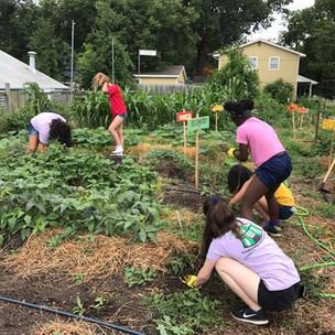 garden work day youth pink shirts.jpg