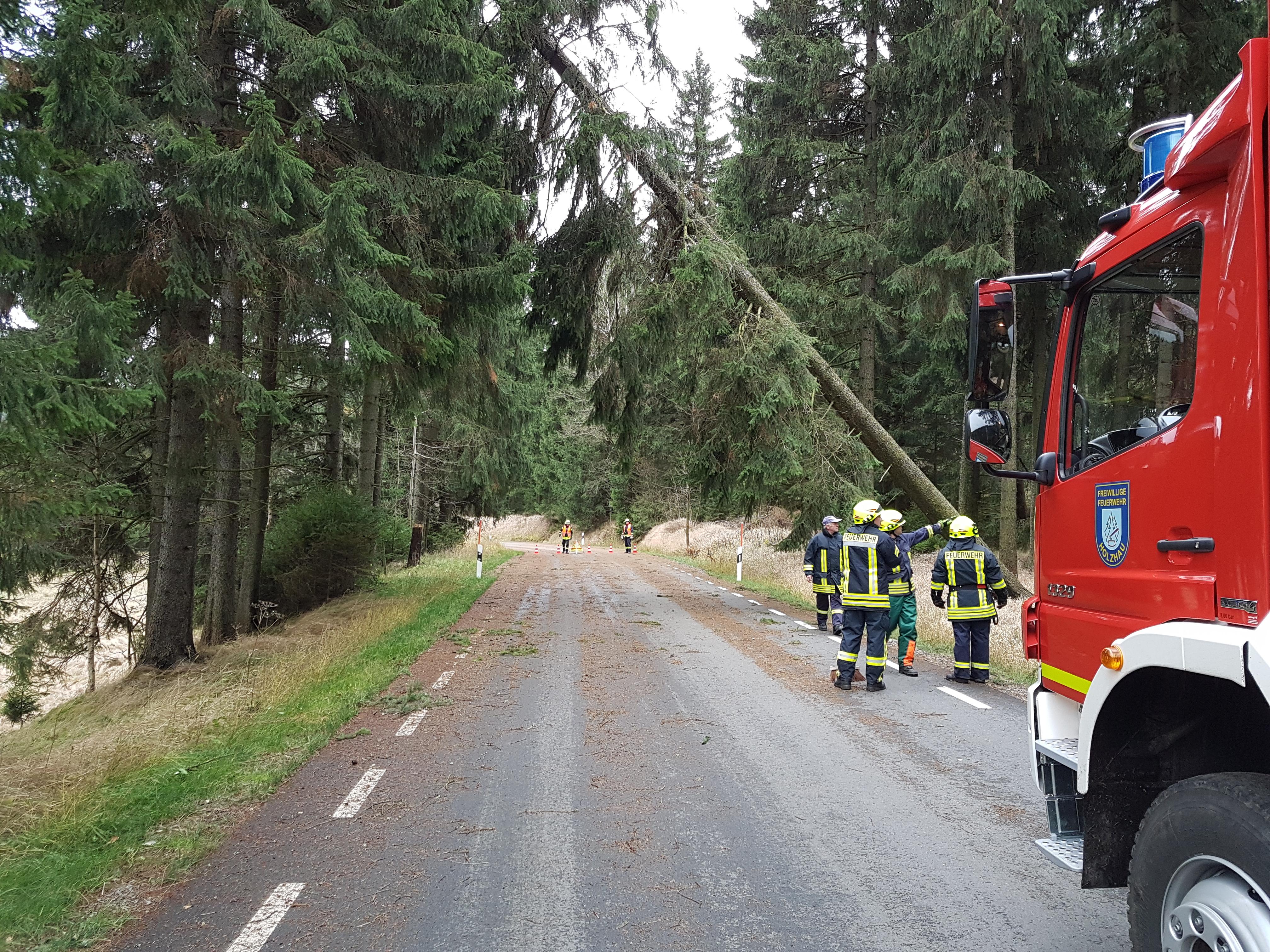 2017-10-29 Sturm Herwart (30)