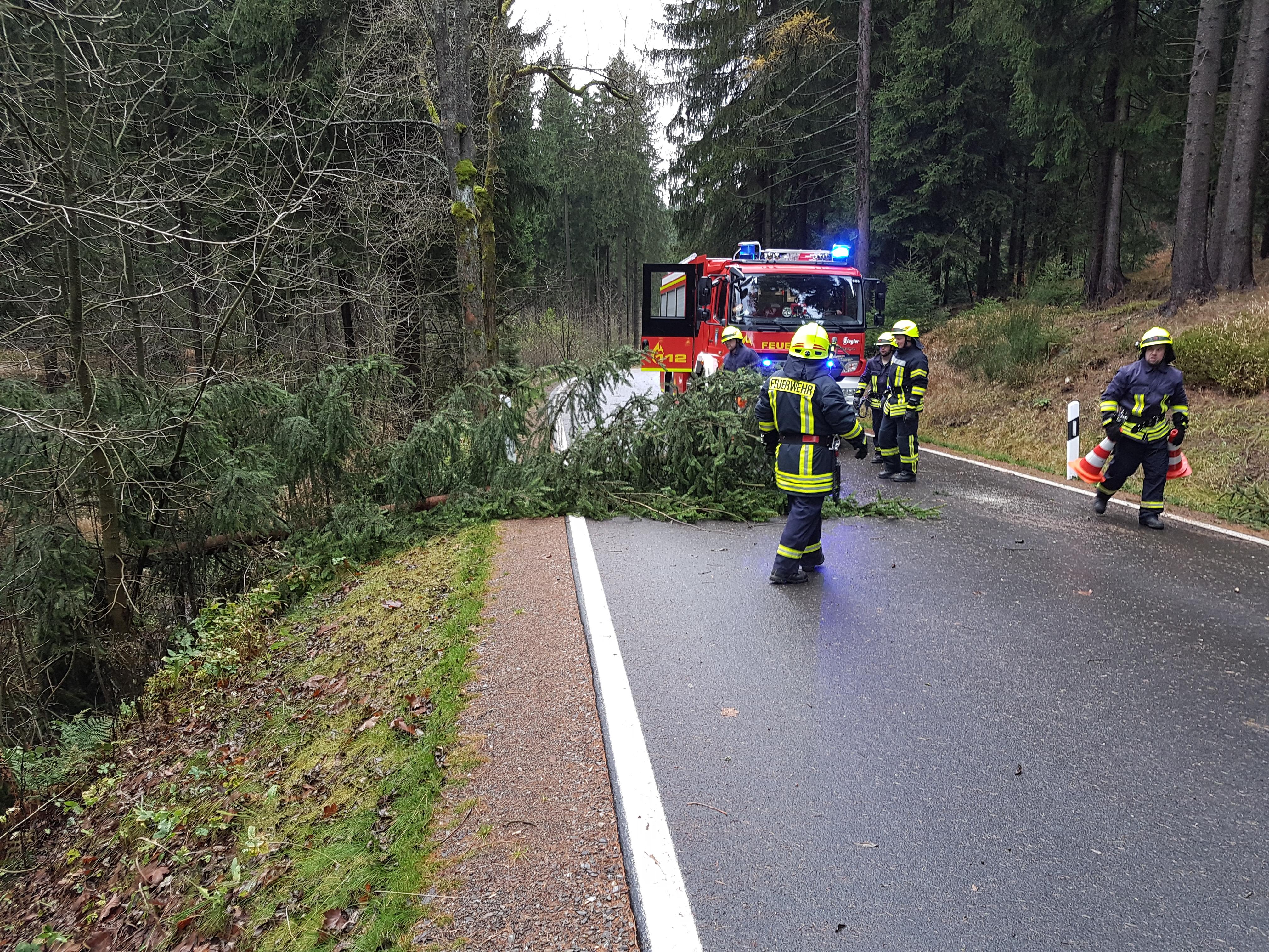 2017-10-29 Sturm Herwart (6)