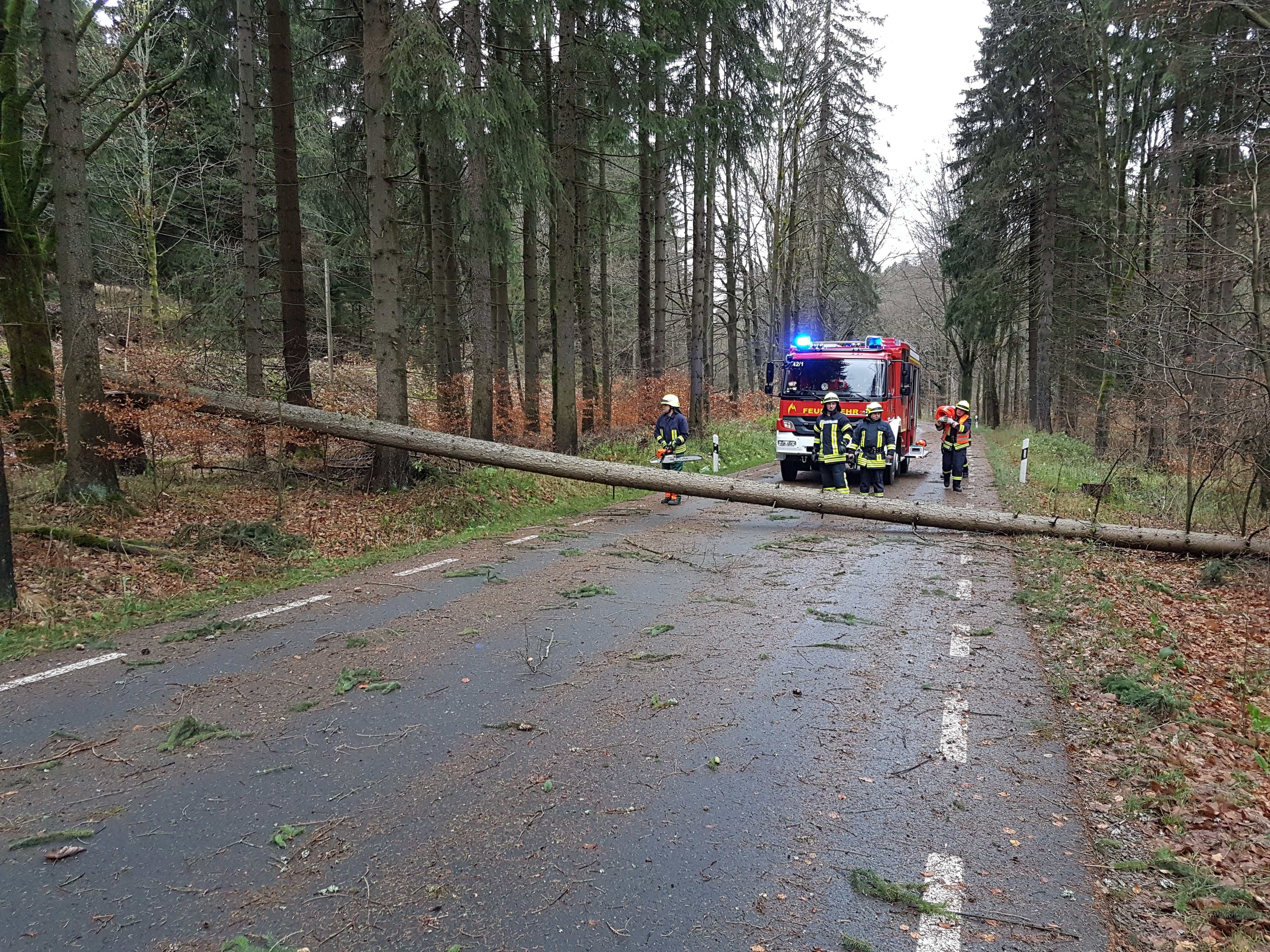 2017-10-29 Sturm Herwart (23)
