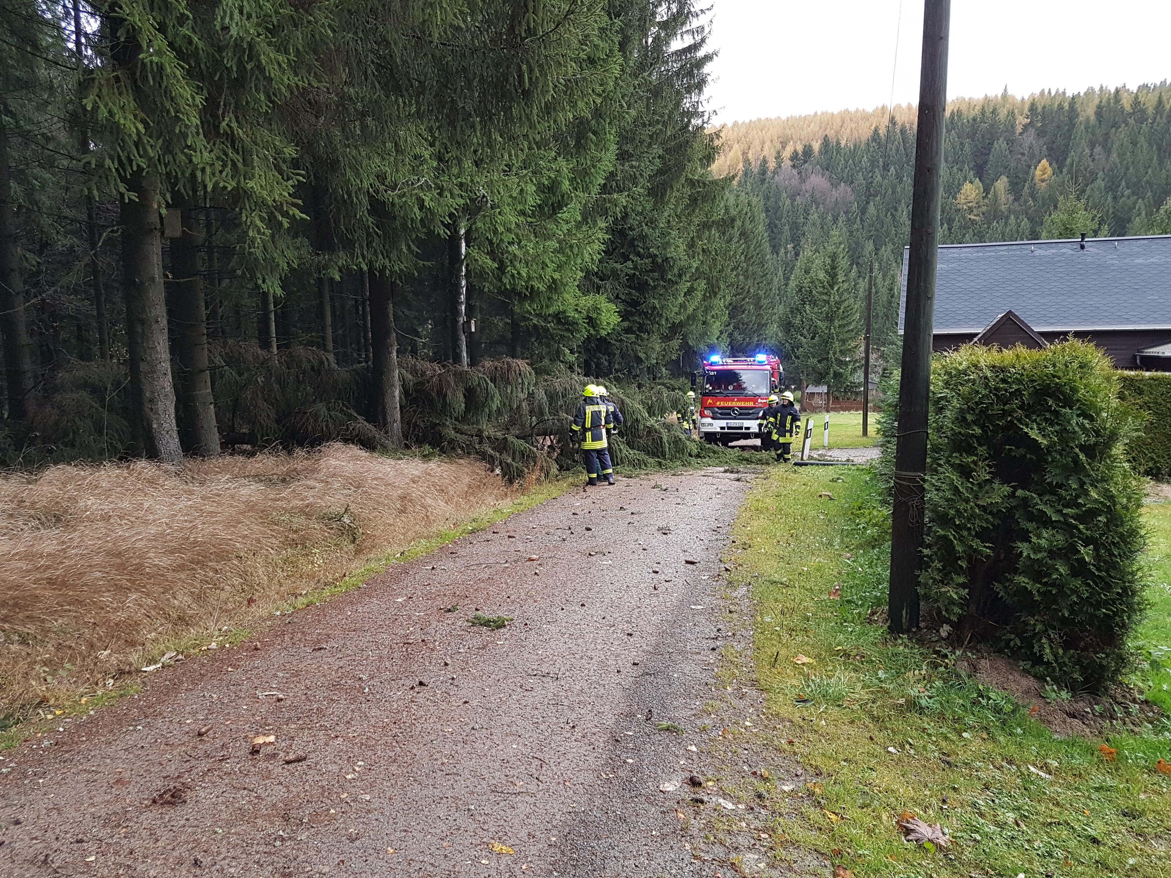 2017-10-29 Sturm Herwart (7)