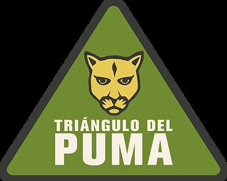 Editable Logo triangulo sin texto.png