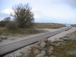 REKU Strandweg Sehlendorfer Strand (3)