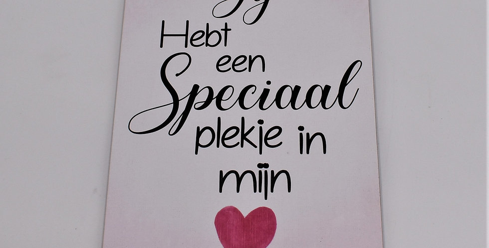 Jij hebt een speciaal plekje in mijn hart 14x20