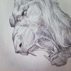 Facebook - Leo #leo #lion #pen #penandink #art #drawing #crosshatch #illustration #mondaymuse