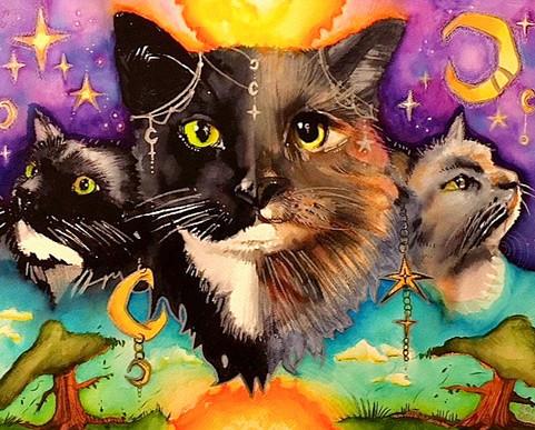 Cat Constellations