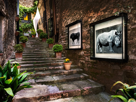 Gallery in the Alley, Assisi
