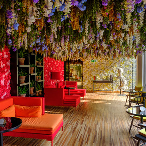 Flower Room, Porto, Portugal
