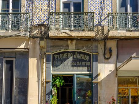 Flower Shop, Lisbon, Portugal
