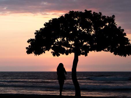 Lone Tree and Girl Sunset, Big Island