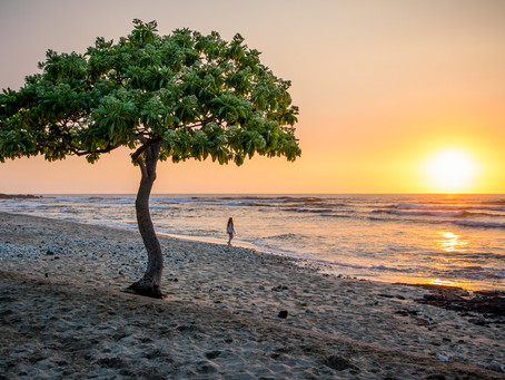 Lone Tree Sunset, Big Island