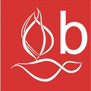 BASP logo.jpeg