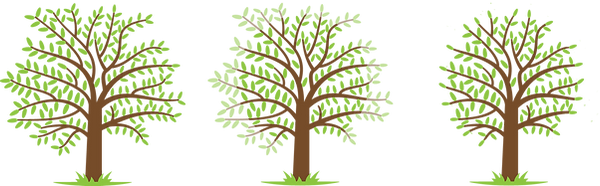 Crown Reduction - Tree Work