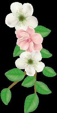 Flores2 editado.png