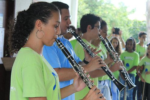 Abraçadeira completa para clarineta  :ONG Agência do Bem - Festa da Aninha
