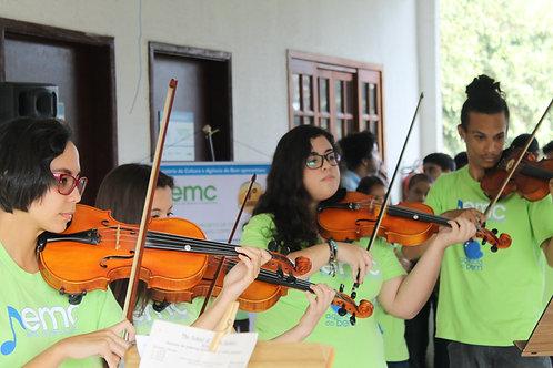 Arco de Violino 3/4 : ONG Agência do Bem - Festa da Aninha