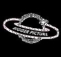 2020biggerpicture_logo444.png