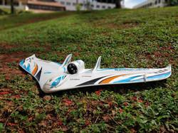 EDF Plane- Air show