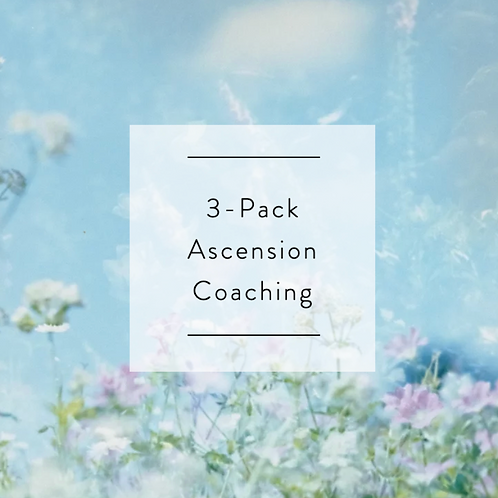 3-Pack Ascension Coaching Session