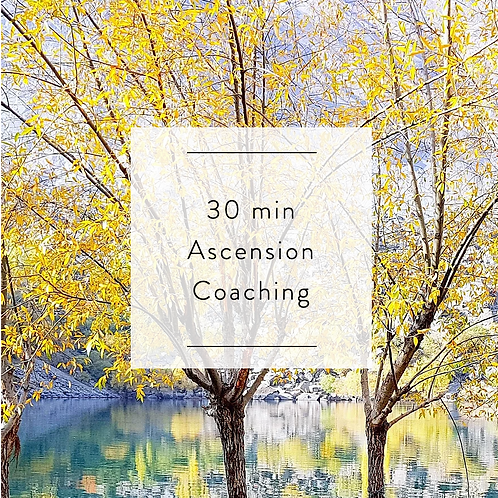 30 min Ascension Coaching Session