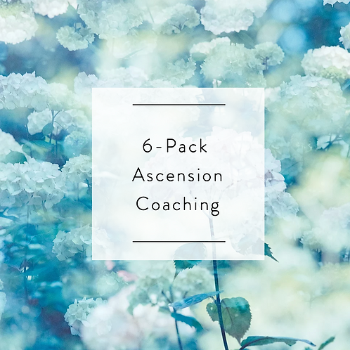 6-Pack Ascension Coaching Session