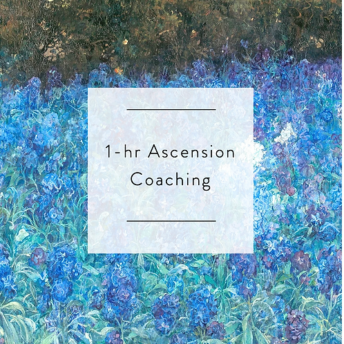 1:1 Ascension Coaching Session