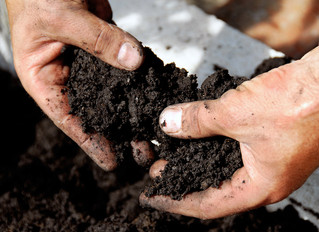 WHAT IS THE ECONOMIC VALUE OF SOIL ORGANIC CARBON AND HOW CAN YOU INCREASE IT?