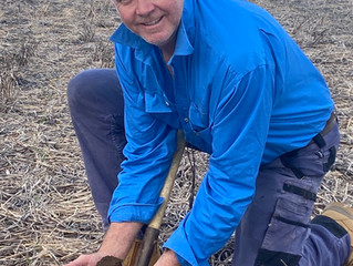 Using Compost to Regenerate Soils on Large Cropping Farms