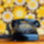 jacinthe rivard, ROTARY PHONE IN ITS NAT