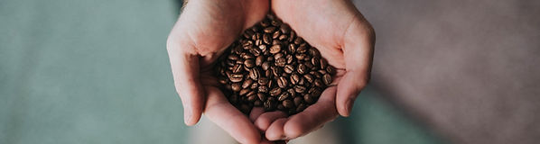 Coffee beans held in hands