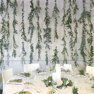Mur végétal euclayptus
