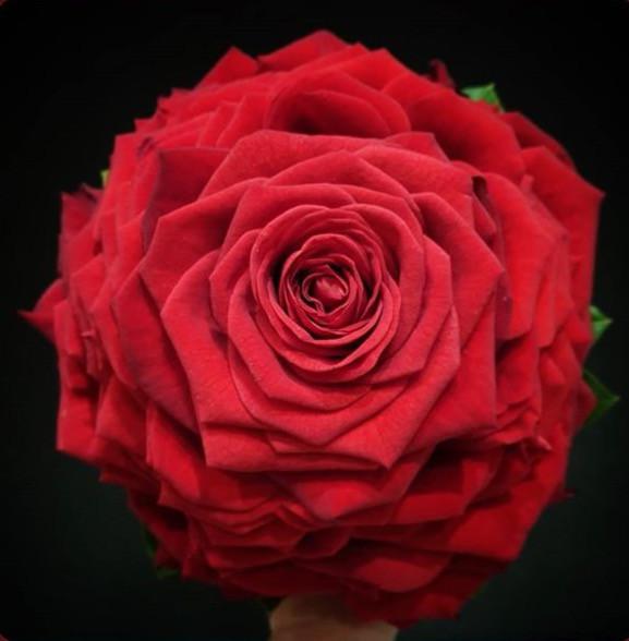 Bouquet de mariée glamelia rose rouge At